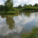 Łowisko Aturex Brzeziny