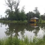 Łowisko w Hawłowicach