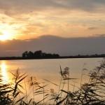Łowisko Staw Jedlanka