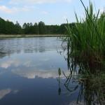 Łowisko Krzesimów