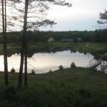 Łowisko leśna Cisza