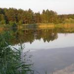 łowisko rostarzewo