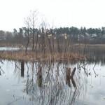 Łowisko Jezioro Rzecko Duże