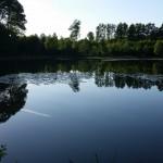 łowisko stawy dylewskie