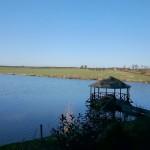 Łowisko Stawy u Sikory