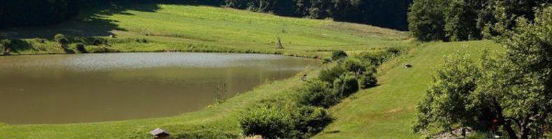 Łowiska Komercyjne śląskie