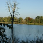 łowisko wodna dolina