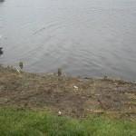 Łowisko Jezioro Rybieniec