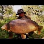 Karpiowe El Dorado